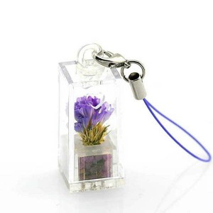 http://promotionale-produse.ro/2792-thickbox/lant-telefon-cadou.jpg